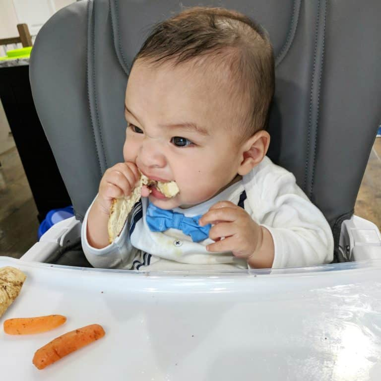 All About Baby Led Weaning