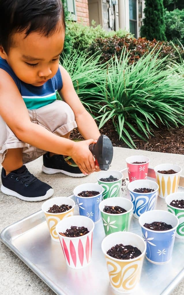 How to Make a Starter Garden with Your Toddler Dixie Cup Water
