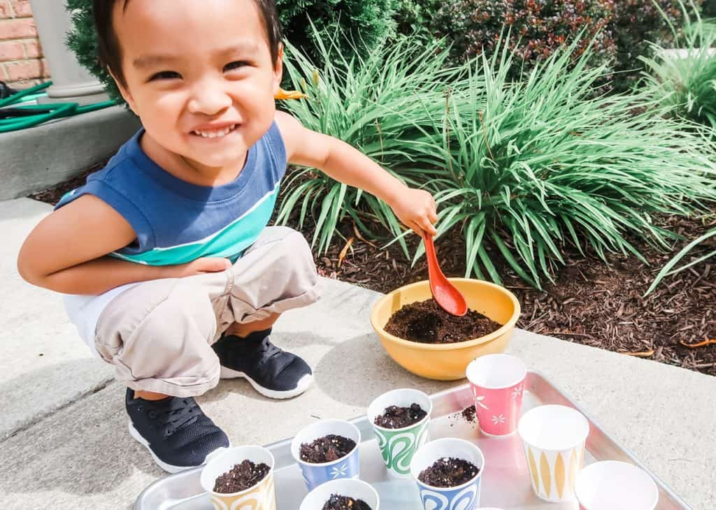 How to Make a Starter Garden with Your Toddler Dixie Cup Prep